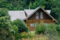 De cabine van de struik Royalty-vrije Stock Foto's