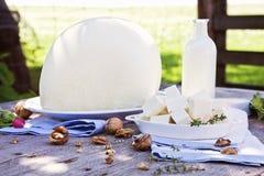 De cabra todavía del queso vida tradicional Imagenes de archivo