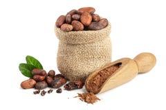 De cacaobonen die in zak met bladeren en de cacao poederen in lepel op witte achtergrond wordt geïsoleerd Stock Foto's