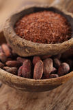De cacaobonen en de geraspte donkere chocolade in oud texured lepelskom Royalty-vrije Stock Fotografie