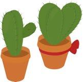 De cactus in bruine pot, verlaat groene flora, stekelige doornige installatie, netelig, stock illustratie