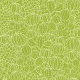 De cactus plant naadloze patroonachtergrond Stock Afbeelding