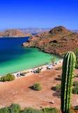 De cactus, strand en ziet Stock Fotografie