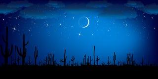De Cactus van Saguaro bij nacht Kleurrijk Vectorlandschap royalty-vrije illustratie