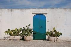 De Cactussen van de deur wirh Stock Afbeelding