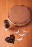 De cake bestrooit met cacaopoeder, Stock Afbeelding
