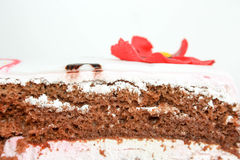 De cake met scharlaken bloemen is verfraaid foto stock afbeelding