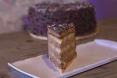 De cake van de chocoladekokosnoot met shreded kokosnoten stock afbeeldingen