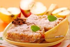 De cake van de appel met kaneel Stock Afbeelding