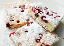 De cake van de bes Stock Foto
