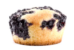 De Cake van de bosbes Royalty-vrije Stock Afbeeldingen