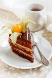 De cake van de chocolade met physalis Stock Foto