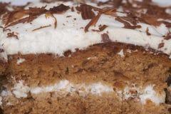 De cake van de chocolade met room Royalty-vrije Stock Afbeeldingen