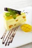 De Cake van de Chocolade van de mango Stock Foto's
