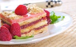 De cake van de framboos Stock Afbeelding