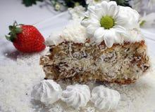De cake van de kokosnoot Royalty-vrije Stock Afbeeldingen
