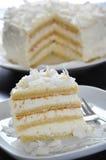 De Cake van de kokosnoot Stock Fotografie