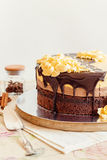 De cake van de roommousse met chocolade Royalty-vrije Stock Afbeelding