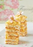 De Cake van de schuimgebakjelaag Royalty-vrije Stock Foto