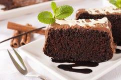 De cake van de sponschocolade Stock Afbeelding
