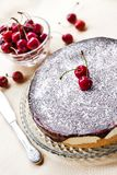 De cake van de de Melksouffl? van de vogel, met chocoladeglans die wordt behandeld stock afbeelding