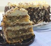 De cake van Tiramisu Royalty-vrije Stock Afbeeldingen