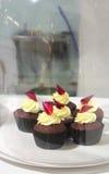 De cakes van de kop Royalty-vrije Stock Foto's