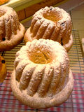 De cakes van Kougelhof Royalty-vrije Stock Foto