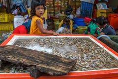 De Cambodjaanse dorpsbewoners sorteren door garnalen Stock Foto's