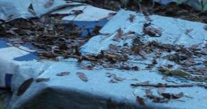 De camera beweegt en verwijdert van rechts naar links droog en de herfst weggaat op tarp gevallen stock footage