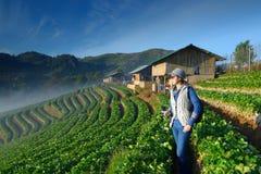 De camera van de Traveleholding bij mooi aardbeilandbouwbedrijf stock foto's