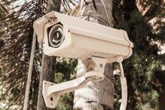 De Camera van de veiligheid of kabeltelevisie Stock Fotografie