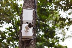 De camera van kabeltelevisie Royalty-vrije Stock Foto's