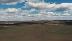 De camera vliegt over het gebied Mooie schoten van landbouwbedrijfgebieden van een vogelperspectief Luchtmening 4K stock videobeelden