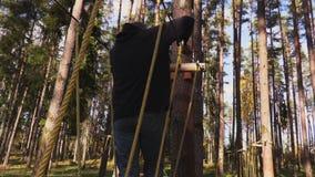 De camera volgt de mens die op kabels tussen bomen lopen stock video
