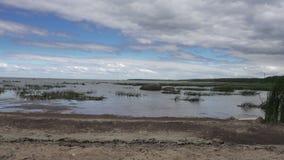 De camerabewegingen langs de kust van de Golf van Finland aan de zomer zonnige dag tegen de achtergrond van mooie wolken stock footage
