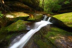 De Caneykreek valt Landschap Alabama stock foto's