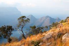 De Canion van de Blyderivier, twee groene bomen, het blauwe meer en de bergen in de wolken in zonsondergang steken achtergrond, Z stock fotografie