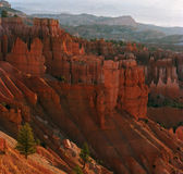 De Canion van Bryce bij zonsopgang Royalty-vrije Stock Afbeelding