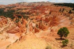 De Canion van Bryce, Utah Stock Foto