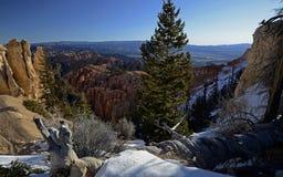 De Canion van Bryce, Utah, de V Stock Foto's