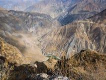De canion van Colca in Peru stock afbeeldingen
