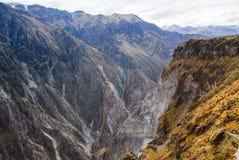 De canion van Colca, Peru Royalty-vrije Stock Foto
