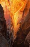 De Canion van de Groef van het Ravijn van het daim Royalty-vrije Stock Foto