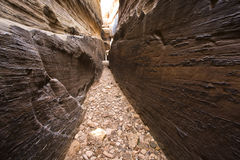 De Canion van de Groef van Utah Royalty-vrije Stock Foto's