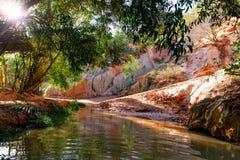 De Canion van de feestroom Rode rivier tussen rotsen en wildernis Mui Ne vietnam stock afbeelding