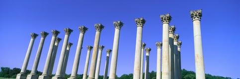 De Capitoolkolommen van het Nationale Arboretum van Verenigde Staten steunden eens het Capitool van de V.S. stock fotografie
