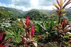 de Caraïben Het eiland van St Lucia Royalty-vrije Stock Afbeelding