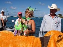 De Caraïbische Parade van de Hond Royalty-vrije Stock Foto's
