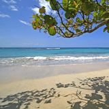 De Caraïbische Scène van het Strand royalty-vrije stock afbeelding